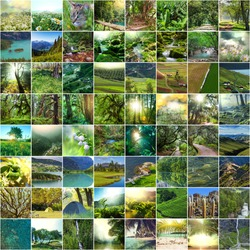 Nature green collage
