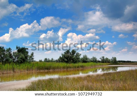 Nature. Lake in the steppes