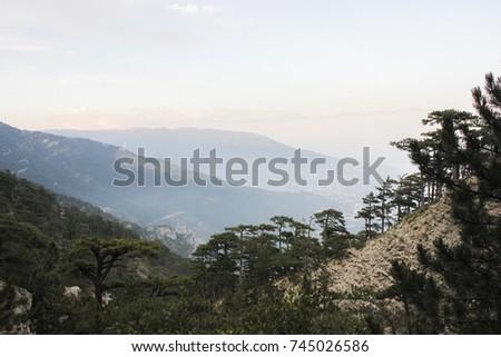 Nature landscape nature background outdoor