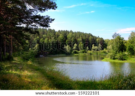 Nature Landscape with the Lake in the Summer Forest