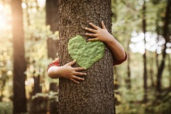 Nature lover, close up of child hands hugging tree with copy space