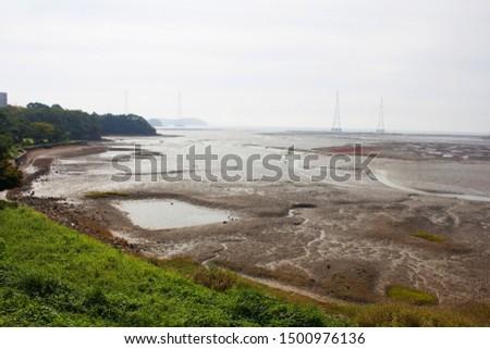 Nature mudflat seascape. Scenic seascape in summer.