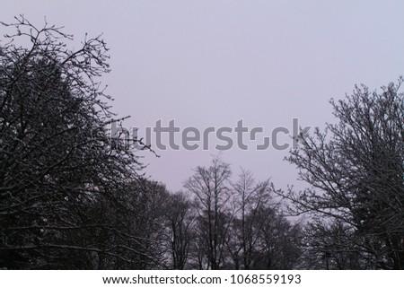 nature nature nature #1068559193