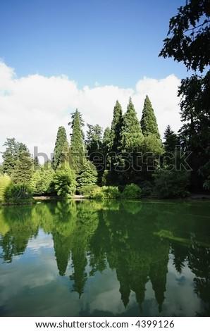 Nature Park in the City VI