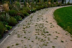 nature paths in the park made of fine rolled trowel. irregular stone paving is overgrown with individual tufts of grass. it gives an untreated neglected impression.