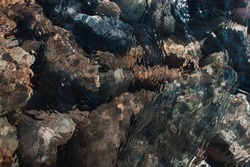 Nature photos of rocks, boulders, and the river in the mountains of Auburn California.