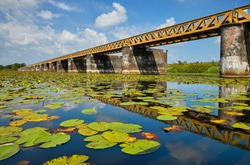 Nature reserve 'Moerputten' with the famous railroad bridge (1887) near 's-Hertogenbosch, province Noord-Brabant, the Netherlands