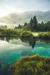 Nature Reserve Zelenci, krajnska gora, Slovenia, Europe. Wonderful morning view of Zelenci nature reserve. Slovenia travel.