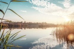 nature river lake landscape with blue sky and sun shine ray. lake reed and bulrush vegetation