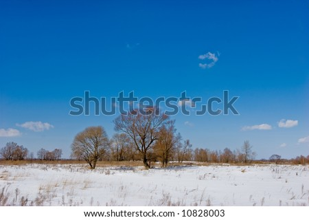 nature series: winter landscape, fine sun weather