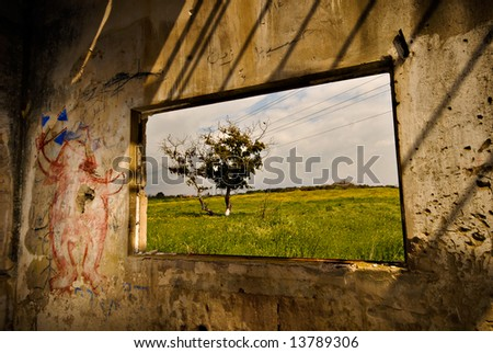 "Nature showing through a derelict window - the natures ""flat screen tv"""