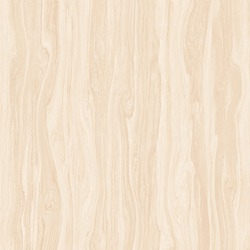 Nature smooth light cream timber wood luxury texture on natural background