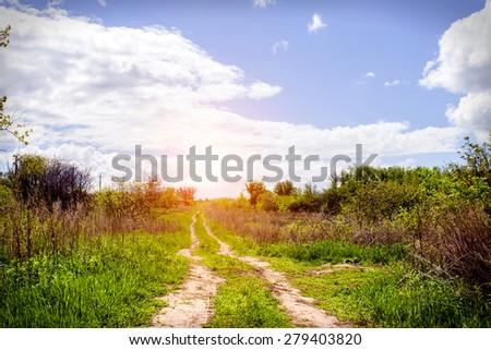 Nature summer