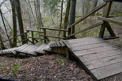 Nature trails wooden stairs in the woods leading down from the hill in the spring.