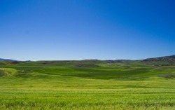 nature view, landscape  with green meadow or blue sky or mountain, half screen blue and gree