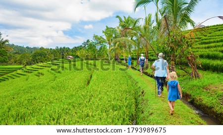Nature walk in green rice terrace. Tourist group of retirees, kids trekking by path with beautiful view of Balinese traditional fields. Travel adventure with child, family vacation in Bali, Indonesia