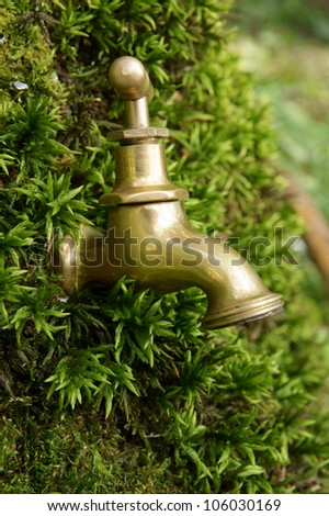 Nature water concept, faucet on birch bark