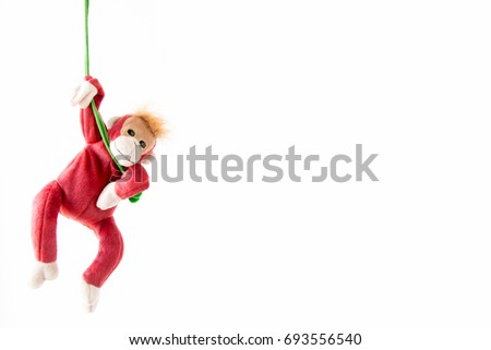 Naughty monkey hung on the green line,