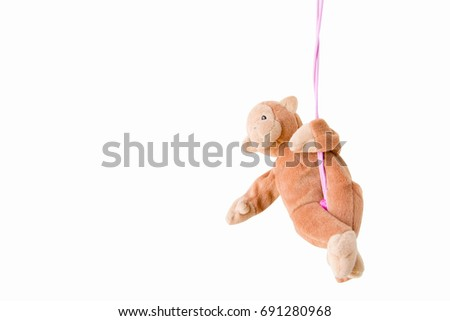 Naughty monkey is hanging on green rope,Everywhere the monkey is happy