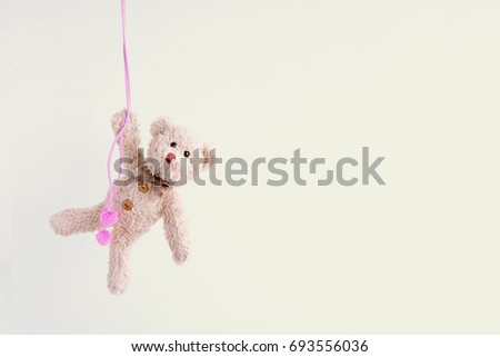 Naughty teddy bear is hanging on the pink rope,Everywhere the doll is happy