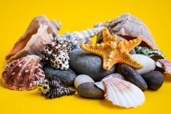 Nautical, Marrine concept. Starfish with Shell against a Yellow background with copy Space. Starfish on pebbles summer texture angle view close up