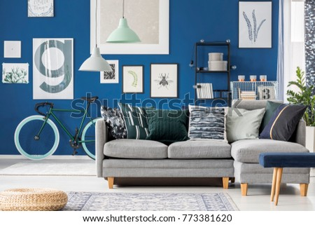 Navy blue living room with bicycle by the wall, gallery of pictures and a big grey corner sofa in the middle #773381620