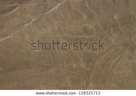 Nazca Lines, Aerial View, Peru, The Monkey