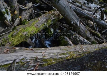 Near the waterfall, near the mountain lake. Altai #1403124557