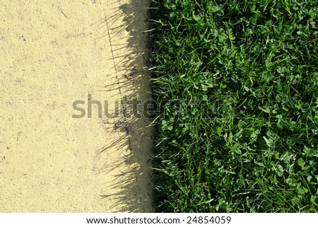 neat edged lawn meets pavement
