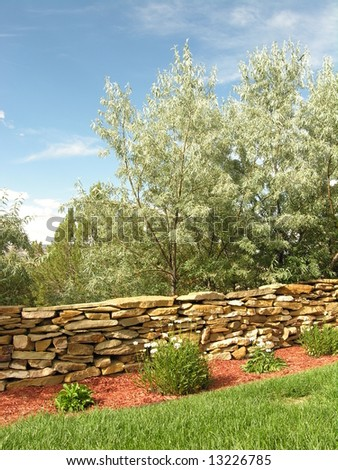 Neatly landscaped yard including some nice Russian Olive.