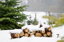 Neatly piled stack of chopped dry trunks wood covered with snow outdoors on bright cold winter day, abstract background. Chunks of stacked firewood. Wood stack in wintery landscape.