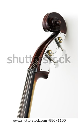 Neck of contrabass
