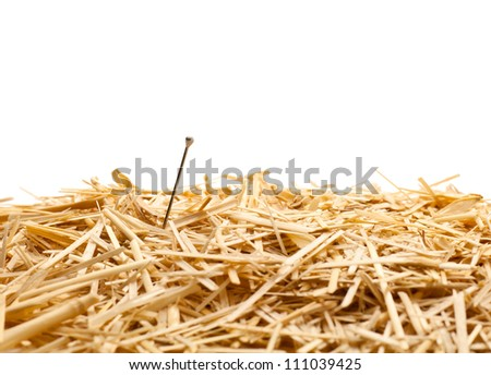 Needle in a haystack , Isolated