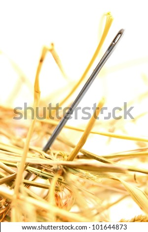 Needle in hay. On a white background.