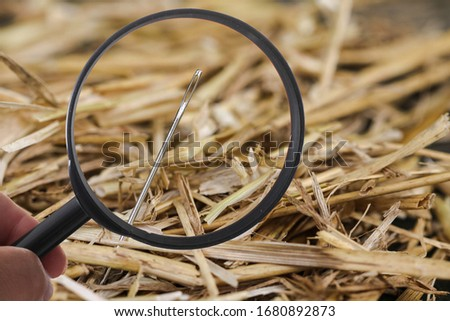 Needle is lost in haystack and searching with loupe Stock photo ©