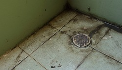 Neglected drain lid in bathroom clogged with hairs, obstruct water flowing, high angle view