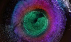 Neon purple pink dark blue colors abstract background. Alcohol ink art. Fantastic inkscape. Energy in the center of the circle. Helix Nebula. Eye of God. Stars in a spiral galaxy with gas cloud space