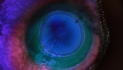 Neon purple pink dark blue colors abstract background. Energy in the center of the circle. Helix Nebula. Eye of God. Flying through stars in a spiral galaxy with gas cloud space