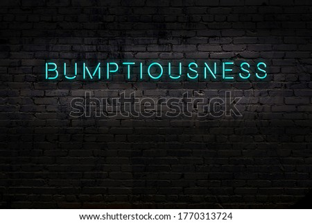 Neon sign with inscription bumptiousness against brick wall. Night view Stock photo ©