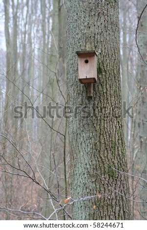 Nest box for birds in forest