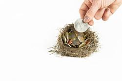 Nest full of coins money savings for retirement