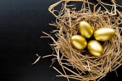 Nest Full Of Golden Eggs on black background. Financial success.