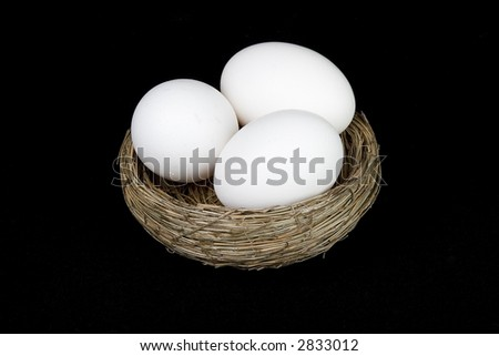 nest of eggs on black