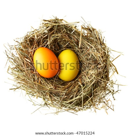 Nest with easter eggs isolated over white background