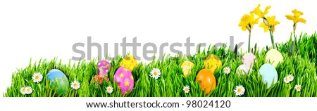 Nests of decorated Easter eggs, nestled in grass