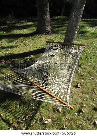 Net Hammock Strung Between Two Trees, Last Week of Summer