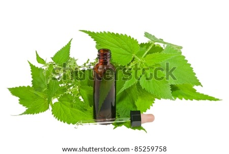 Nettle extract and wild nettle