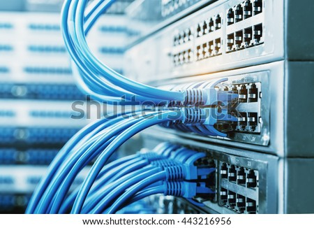 network cables connected in network switches  - Shutterstock ID 443216956
