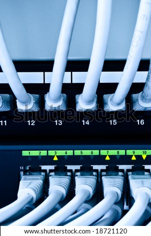 network patch cables and switch