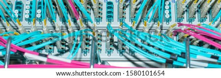 Network switch and network cable fiber optic fiber in a data center